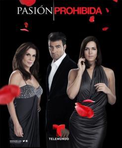 Rai due sulle orme di Canale 5? Dal 7 gennaio 2014 arriva Pasion Prohibida una telenovela inedita in Italia nel pomeriggio