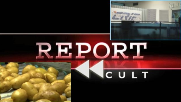 """Report Cult, l'""""Espresso nel caffè"""" nella puntata del 1° luglio 2014"""