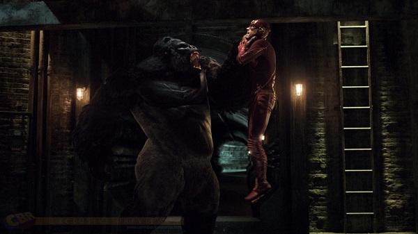 The Flash 3: confermato il ritorno di Gorilla Grodd e Savitar