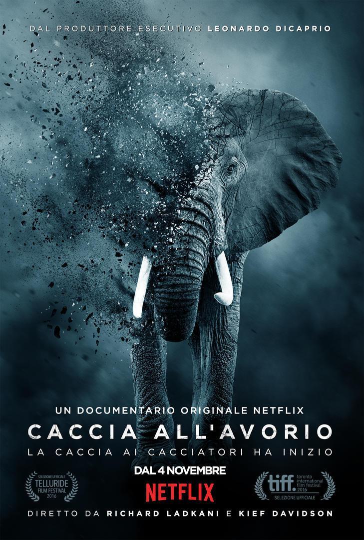 Caccia all'Avorio: Su Netflix dal 4 Novembre. Ecco trailer e locandina