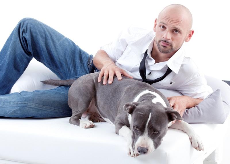 """""""Sky Uno Loves Animals"""": dal 22 luglio il pop-up channel dedicato agli animali domestici"""