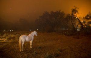 """""""Cambiamenti climatici – La grande sfida"""": su National Geographic uno speciale su come sta cambiando il clima"""