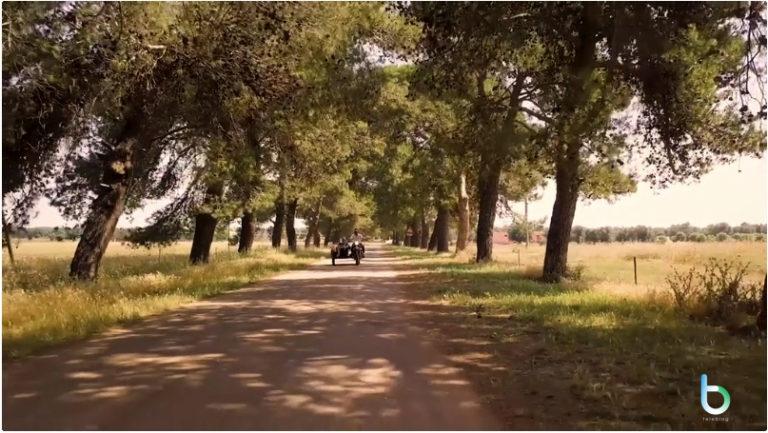 """""""L'anima vista da qui"""", in esclusiva sulla nuova Rai Play il documentario sui Negramaro"""