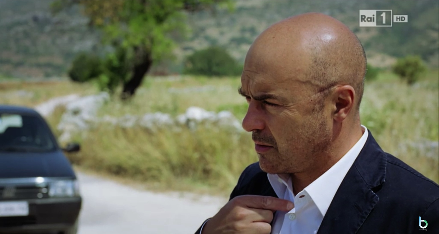 Il commissario Montalbano auditel