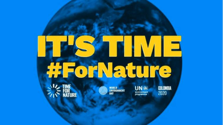 """""""Only One Earth"""", la programmazione Rai per la Giornata mondiale dell'ambiente"""