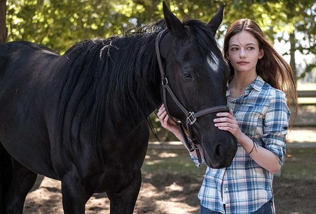 Black Beauty: il film debutterà direttamente su Disney+