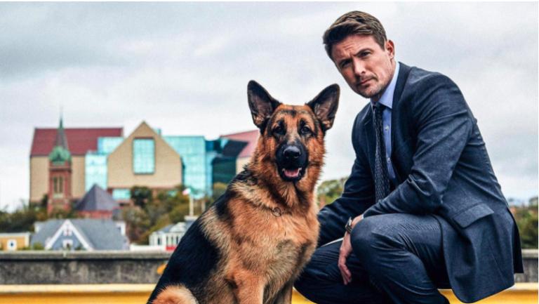"""""""Hudson & Rex"""", torna su Rai tre la serie che si ispira al famoso cane poliziotto"""